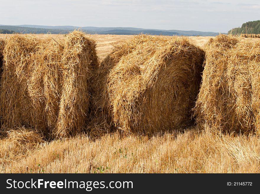 Three stacks of hay