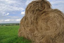 Free Straw Bales On Farmland Stock Images - 21150174