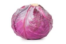 Free Red Cabbage Stock Photos - 21150193
