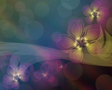 Free Dark Background With Fantastic Flowers Royalty Free Stock Photography - 21150237
