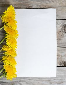 Yellow Dandelion On A Wooden Surface Stock Image