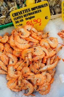 Fresh Shrimps On Ice Stock Photo