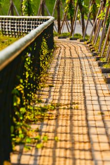 Free Brick Sidewalk Stock Photography - 21151382