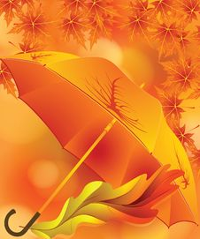 Free Autumn Royalty Free Stock Photography - 21151787