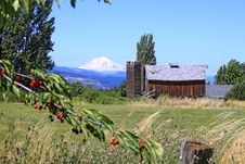 Mount Adams With Red Barn Royalty Free Stock Image