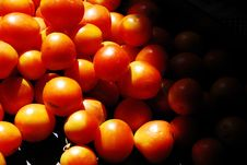Free Tomatoes Stock Image - 21155551