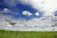 Free Green Field And Sky Royalty Free Stock Photos - 21159948