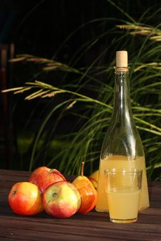 Free Cider - Homemade Fresh Drink Stock Photos - 21160543