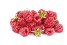 Free Raspberry Royalty Free Stock Photos - 21161598