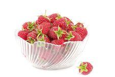Free Raspberry Royalty Free Stock Photo - 21161605