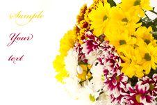 Free Beautiful Bouquet Stock Photos - 21162433