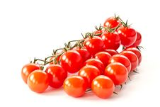 Free Branch Of Red Cherry Tomatoes Stock Photos - 21162483