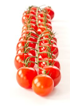 Free Branch Of Red Cherry Tomatoes Stock Images - 21162514