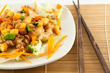 Free Stir Fried Noodle With Chicken Stock Photos - 21162813