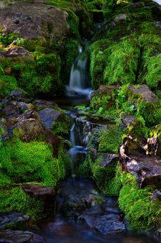 Free Colorado Mountain River Stock Image - 21163441
