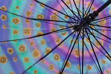 Free Colorful Of The Umbrella Royalty Free Stock Photography - 21164317