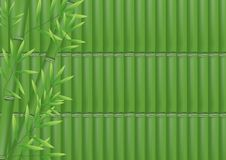Free Bamboo Background Royalty Free Stock Photos - 21166438