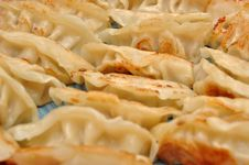Free Fried Chinese Dumplings Royalty Free Stock Photos - 21166548