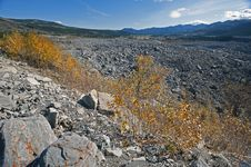 Free Alberta - Frank Slide Disaster Stock Photo - 21169380