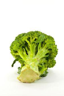 Fresh Broccoli On White Background Stock Photography