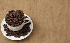 Free Coffee Stock Images - 21170604