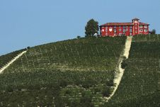 Free View Of A Farm In The Vineyards Royalty Free Stock Image - 21171876