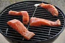 Free Grill Salmon Stock Photos - 21172403