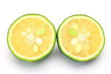 Free Citron Stock Photos - 21174533