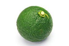 Free Citron Royalty Free Stock Photography - 21174547