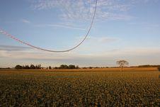 Free Balloon Landing Royalty Free Stock Photos - 21175588