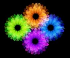 Free Flower Art Background Royalty Free Stock Images - 21176379