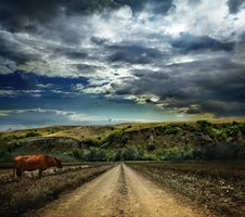 Free Rural Road Through The Field In The Mountains Stock Image - 21178411