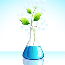 Free Biotechnological Plant Royalty Free Stock Photos - 21178688