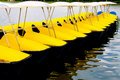 Free Row Of Yellow Watercycles Royalty Free Stock Photo - 21182205
