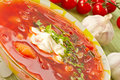 Free Borscht Stock Photos - 21184373