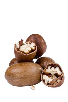 Free Pecan Nuts Royalty Free Stock Photo - 21180595