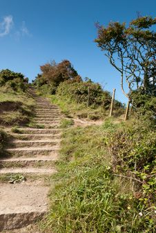 Free Stairs In Port Isaac Royalty Free Stock Image - 21180656