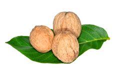 Free Walnuts Nuts Stock Photos - 21183273