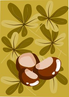 Free Three Chestnut And Autumn Background - Royalty Free Stock Photo - 21185955