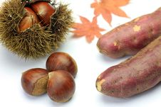 Free Chestnut And Sweet Potato Royalty Free Stock Photography - 21186887