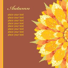 Autumn Floral Card Stock Photos