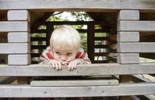 Free Boy On Climbing Frame Royalty Free Stock Image - 21189496