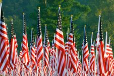 Free Flags In The Healing Fields For 9/11 Royalty Free Stock Photography - 21189957