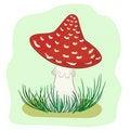 Free Mushroom Amanita Stock Image - 21191321