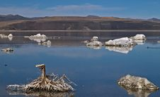 Free Tufas At Mono Lake Stock Photo - 21192210