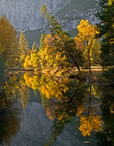 Free Fall Colored Forest Reflection Over The River Stock Photography - 21192242