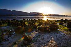 Free Sunrise On Beach Royalty Free Stock Photo - 21192445