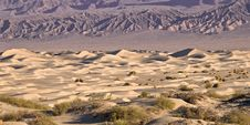 Free Death Valley Mesquite Sand Dunes Royalty Free Stock Photos - 21192638