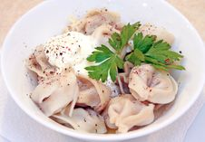 Meat Dumplings With Spices Stock Photography