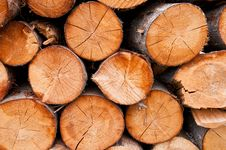 Free Pile Of Wooden Logs Stock Photos - 21193583